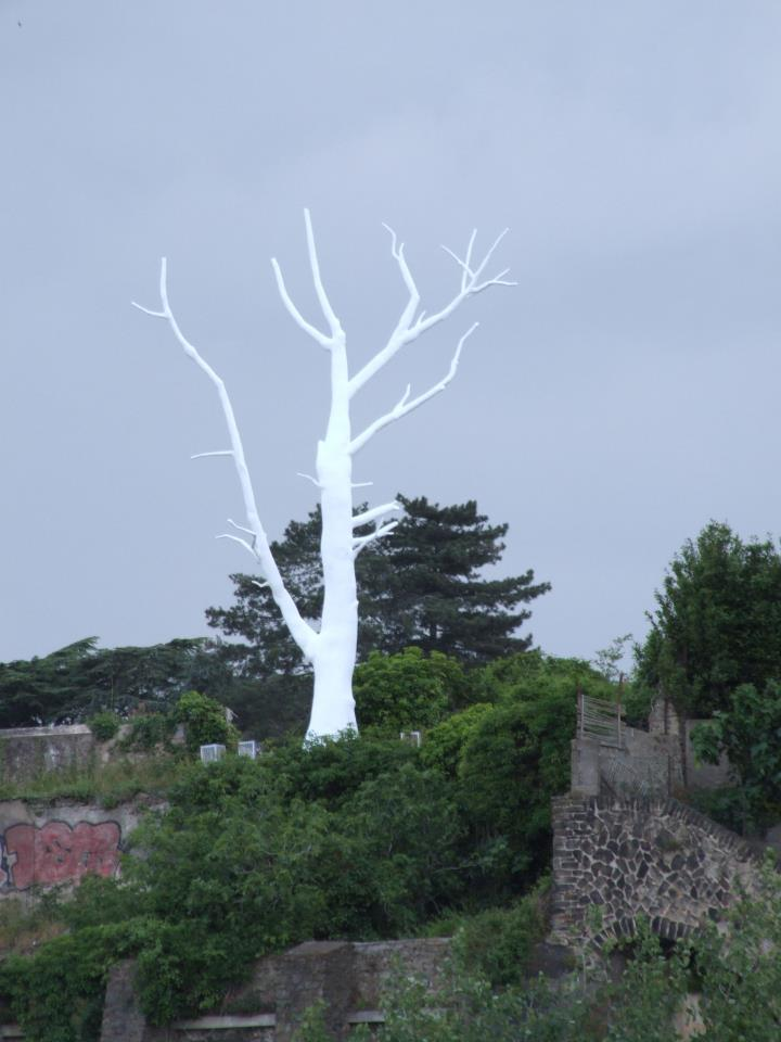 Lunar tree